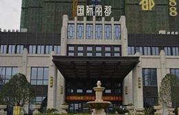 湖北武汉国际丽都楼宇对讲工程